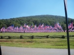 Field of Flags7